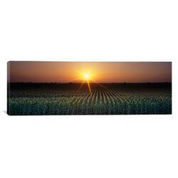Panoramic Sunrise, Crops, Farm, Sacramento, California Photographic Print on Canvas