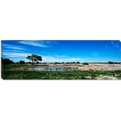 Okaukuejo, Etosha National Park, Kunene Region, Namibia Canvas Wall Art