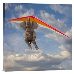 'Flying Elephant' by John Lund Graphic Art on Canvas