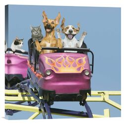 'Riding on Roller Coaster' by John Lund Graphic Art on Canvas