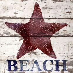 Starfish Beach Reclaimed Wood - White Barn Siding Art