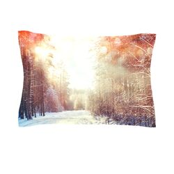 Winter Walkway by Snap Studio Woven Pillow Sham