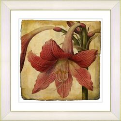 Vintage Botanical No. 01A by Zhee Singer Framed Giclee Print Fine Wall Art