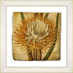 Vintage Botanical No. 15A by Zhee Singer Framed Giclee Print Fine Wall Art