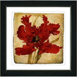 Vintage Botanical No. 21A by Zhee Singer Framed Giclee Print Fine Wall Art