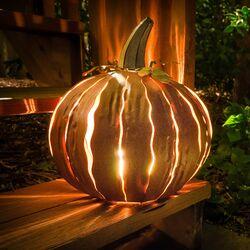 Squatty Pumpkin Luminary Decoration