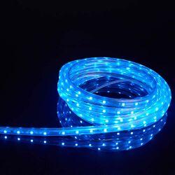 Lasso Rope Light