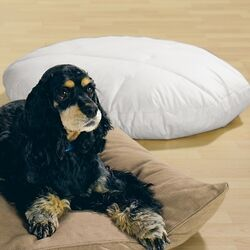 Oval Dog Pillow