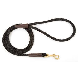 Small Snap Dog Leash