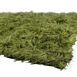 Celecot Green Area Rug