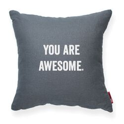 Expressive You Are Awesome Decorative Pillow