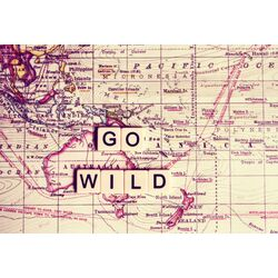 Go Wild Painting Prints on Canvas