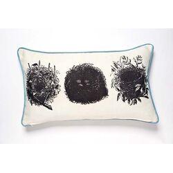 Curiosities Oology Pillow