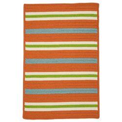 Painter Stripe Tangerine Indoor/Outdoor Area Rug