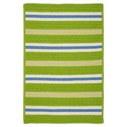 Painter Stripe Garden Bright Indoor/Outdoor Area Rug
