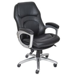 Back in Motion� Health and Wellness Executive Office Chair