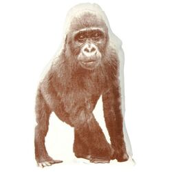 Mini Organic Cotton Gorilla Cushion