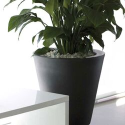 Aigua Cono Round Flower Pot Planter with Self-Watering