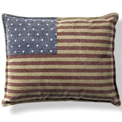 Usa Cotton Throw Pillow (Set of 2)