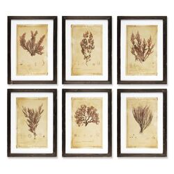 Andros 6 Piece Framed Painting Print Set