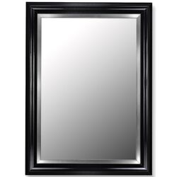 Glossy Black Petite / Stainless Liner Framed Wall Mirror