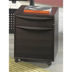 2-Drawer Filing Cabinet in Wood