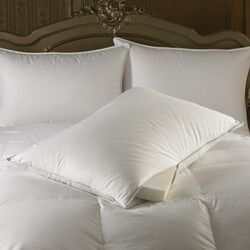 Intera Medium Dual Filled Pillow