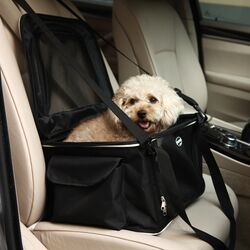 Lightweight Collapsible Pet Carrier
