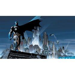 Surestrip Batman Chair Rail Prepasted Wall Mural