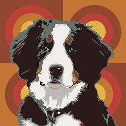 Pooch D�cor Bernese Mountain Dog Portrait