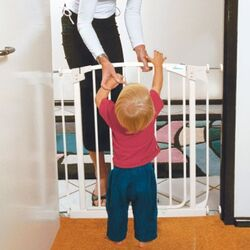 Chelsea Swing Close Gate Combo Pack