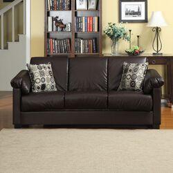 Renu Convert-a-Couch Convertible Sofa
