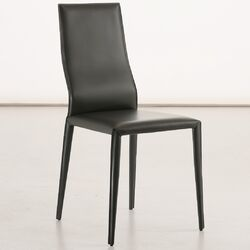 Data Side Chair (Set of 2)