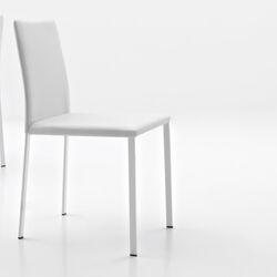 Sarah Side Chair (Set of 2)