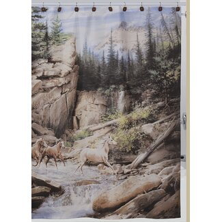 Horse Canyon Shower Curtain from Wayfair!