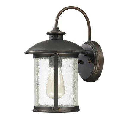 Dylan 1-Light Outdoor Wall Lantern