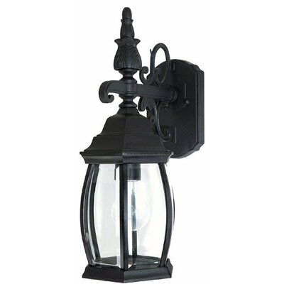French Country 1-Light Outdoor Wall Lantern Finish: Black