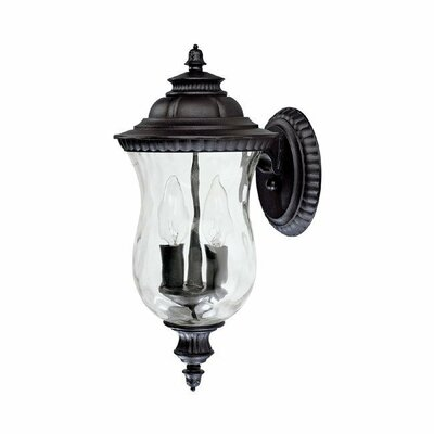 Ashford 2-Light Outdoor Wall Lantern Finish: Black