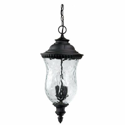 Ashford 3-Light Outdoor Hanging Lantern Finish: Black