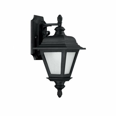 Brookwood 1-Light Outdoor Wall Lantern