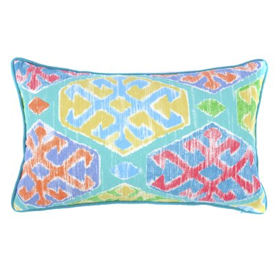 C OutdoorLumbar Pillow Color: Teal