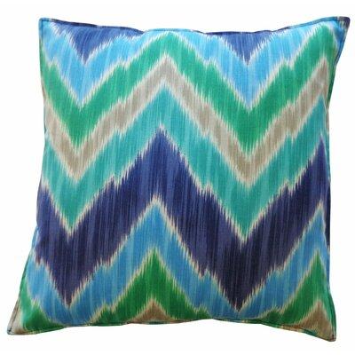 Abbigail Pulse Outdoor Throw Pillow Color: Sky Blue