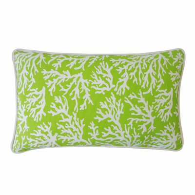 Coral Outdoor Lumbar Pillow Color: Green