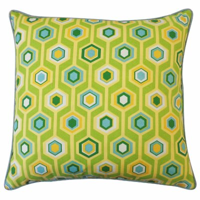 Recoleta Outdoor Throw Pillow Color: Green