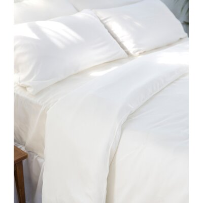 Agata 3 Piece Duvet Set Color: Ivory, Size: Queen