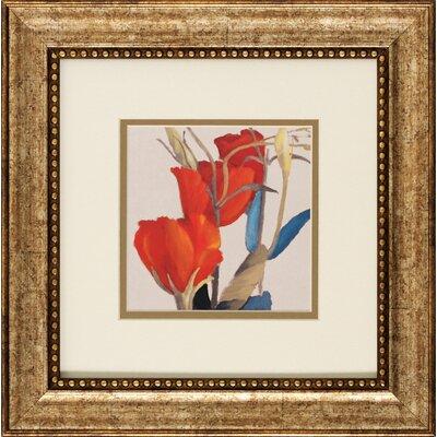 Grandiflorum I / II 2 Piece Framed Graphic Art Set 1458