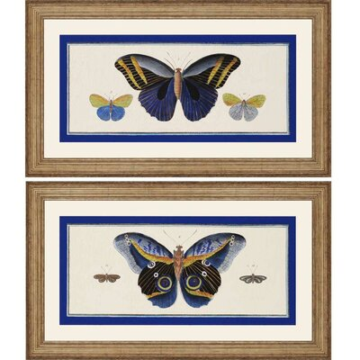 Bleu Papillion II by Burney 2 Piece Framed Graphic Art Set 4453