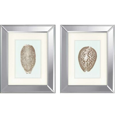 Shells I by Redoute 2 Piece Framed Graphic Art Set 1215