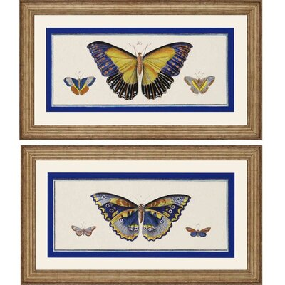 Bleu Papillion I by Burney 2 Piece Framed Graphic Art Set 4452