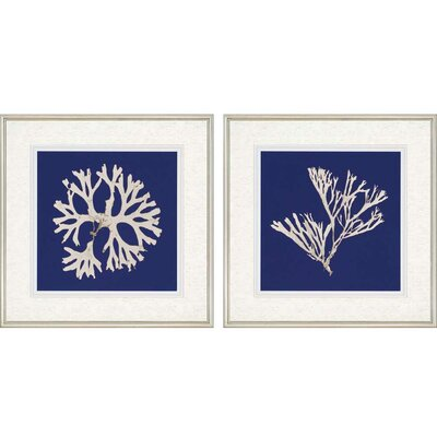 Seaweed I Giclee by Anonymous 2 Piece Framed Graphic Art Set 3506